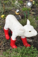 17 Lamb with wellies