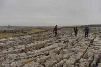 33 More limestone