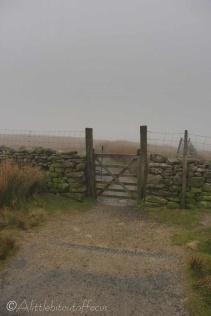 4 Gate