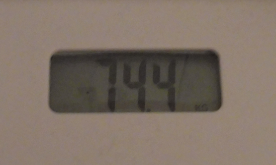 Weight Week 12.PNG