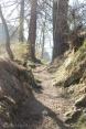 1 Path