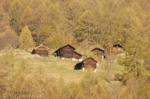 9 Chalets and Raccards