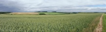 16 Wolds panorama