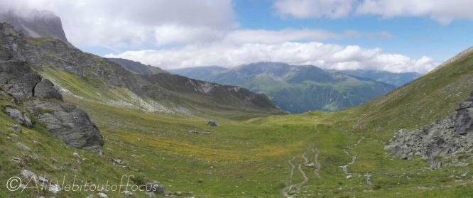 22 Alpine meadow