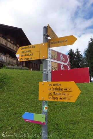 3 Signpost