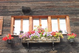 4 Window box