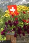 10 Swiss flag