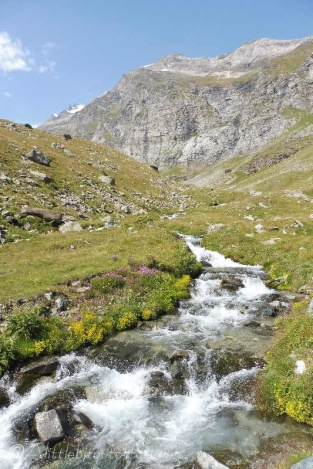 3 Mountain stream