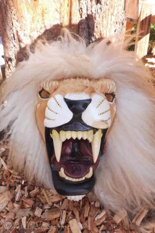 6 Carnival mask