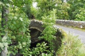 14 Classic bridge