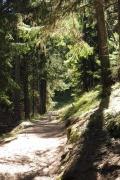 16 Path