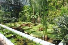 28 Vertical Garden