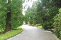 4 Garden walkway