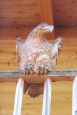 4 Wood carving