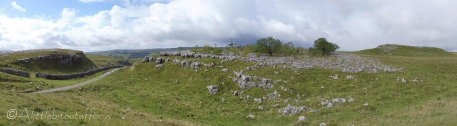 5 Limestone pavement