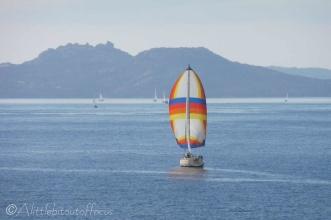 1 Yacht