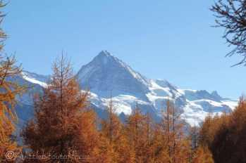 12 The Dent Blanche