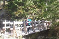 2 Bridge