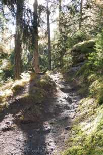 2 Path up