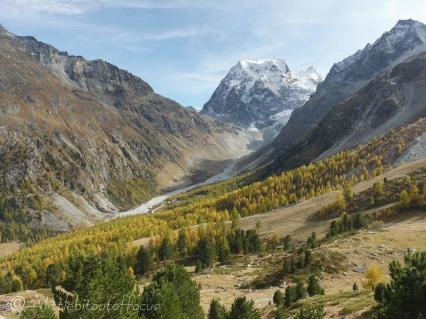 24 Mont Collon