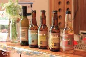 10 Cider bottles