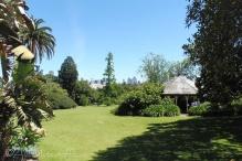 23 Botanic Garden view