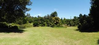 27 Botanic Garden Panorama