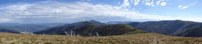 1 Razorback (C), Mt Loch (R)