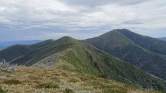 13 Mt Feathertop (R)