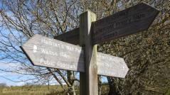 11 Signpost