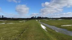 12 Grassy path