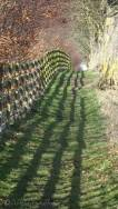 14 Shadows