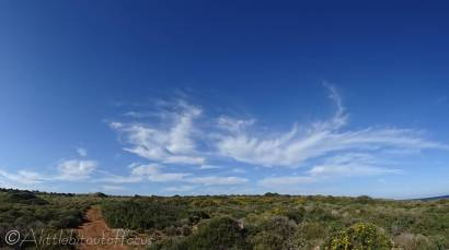 15 Cloud formation