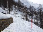 2 Snowy track