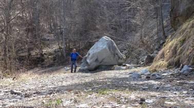 5 Fallen boulder