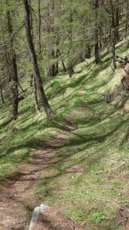 17 Path