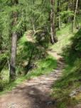 10 Path