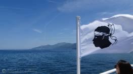 2 Corsican flag