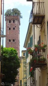 20 Torre Guinigi