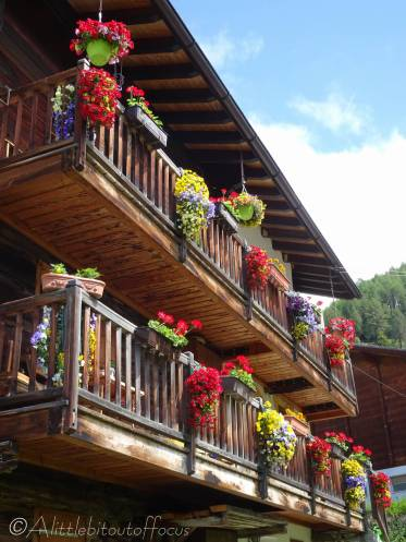 6 Chalet flowers