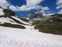 12 Snowy path
