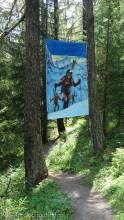 5 Ski Touring
