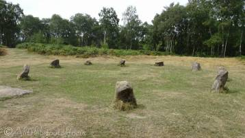 17 Nine Ladies Stone Circle