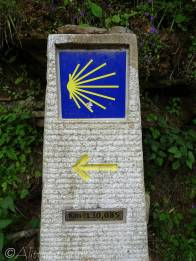 29 Camino direction sign