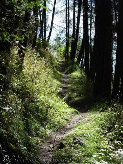 6 Path