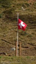 21 Swiss flag