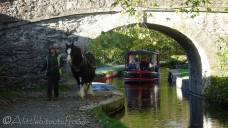 22 Horse drawn barge