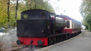 23 Steam Train