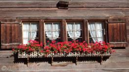 3 Window box