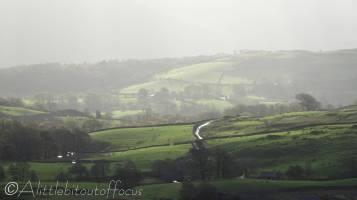 5 Green fields